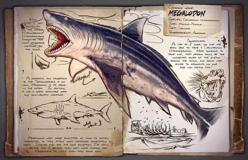 Megalodon | Мегаладон | Акула