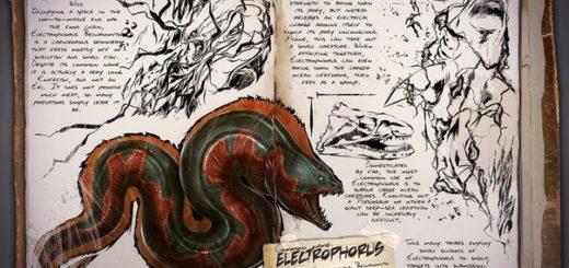 Electrophorus | Электрический угорь| Электрофорус