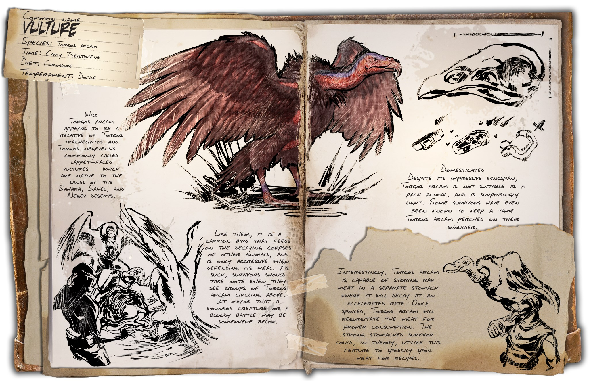 ARK: Scorched Earth Vulture