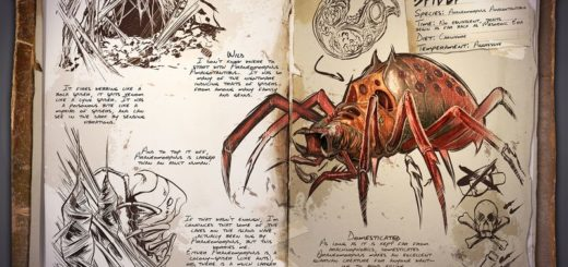 Spider | Паук
