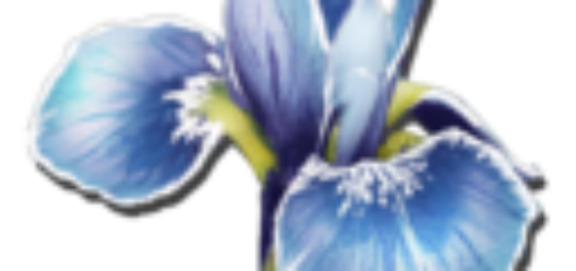 Rare Flower | Редкие цветы