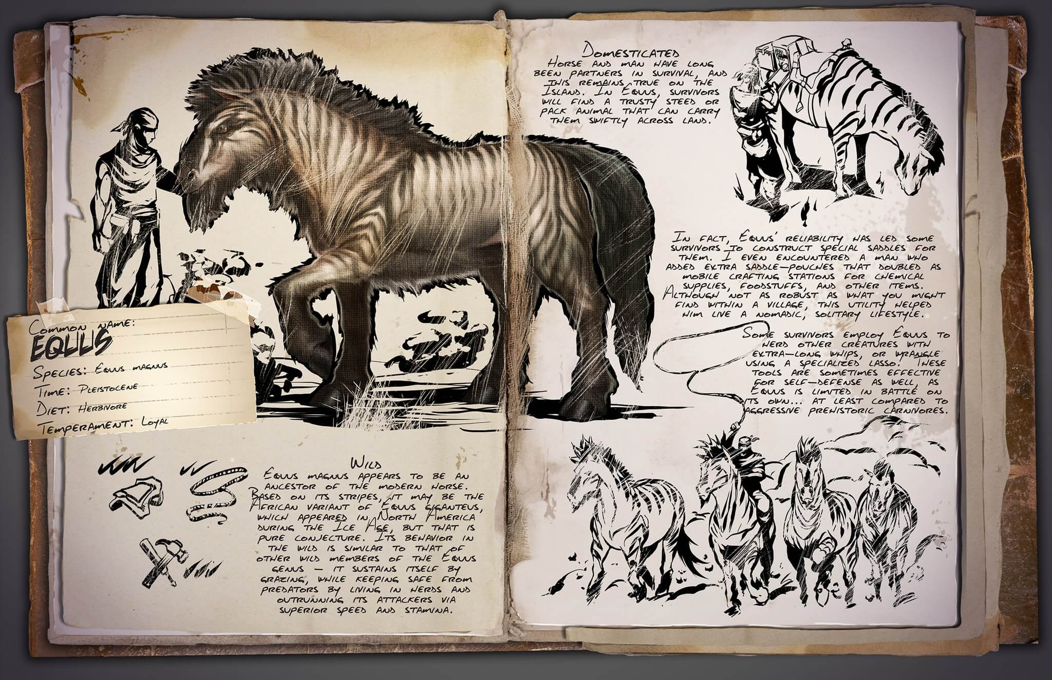 Equus ARK Survival Evolved