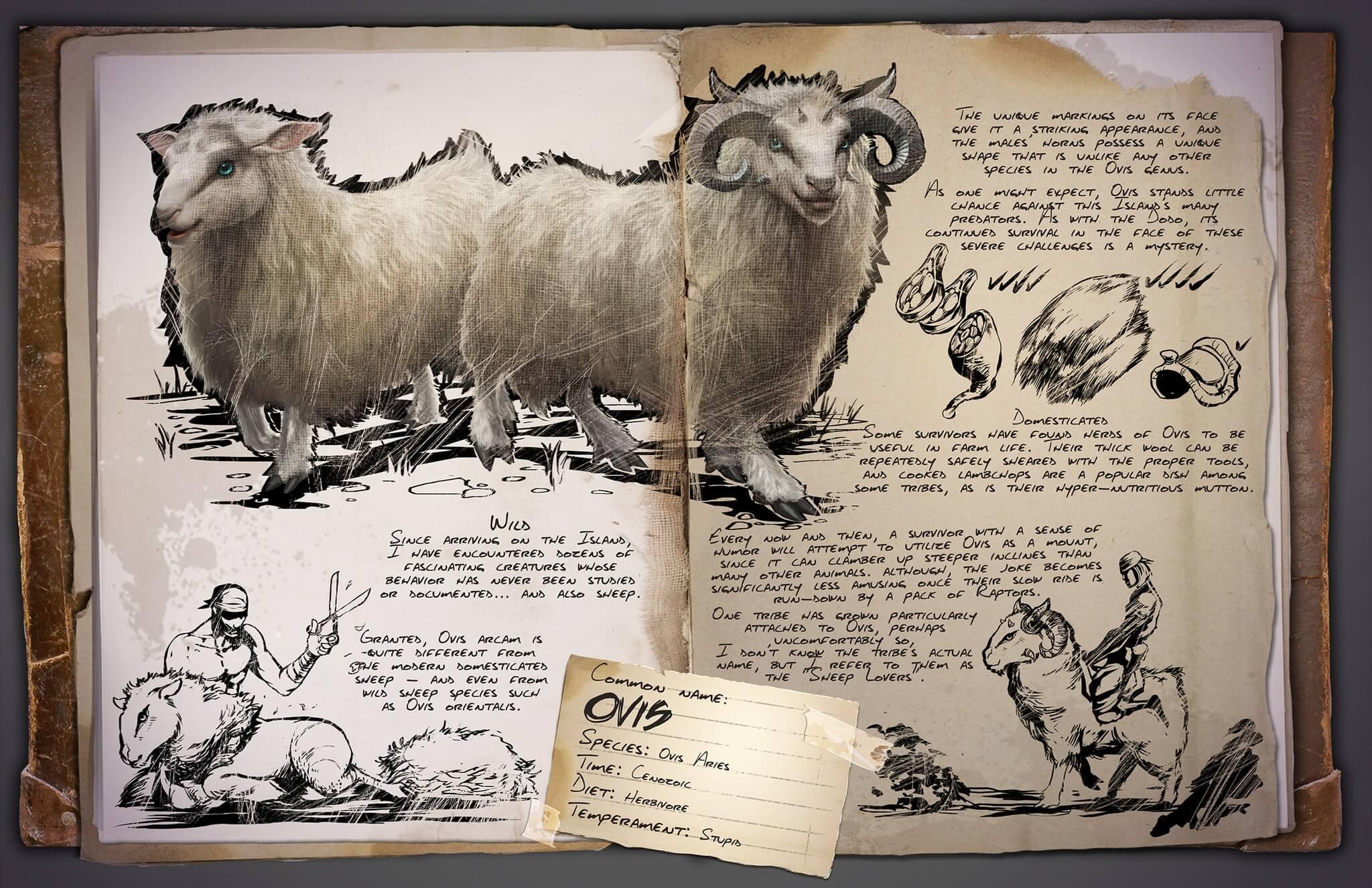 Овца | Ovis ARK Survival Evolved